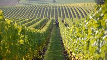 Fredericksburg Hill Country Wine Tour, San Antonio, Wine Tasting & Winery Tours