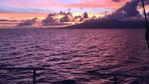 Sunset Whale Watch, Maui, Sunset Cruises