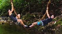 Rain Forest Hike in Golfito, Puntarenas, Hiking & Camping