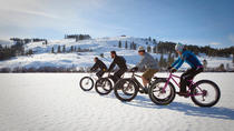 Fat eBike Ride on Mount Royal, Montreal, Bike & Mountain Bike Tours
