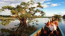 4-Day Premium Cuyabeno Tour Tapir Lodge from Nueva Loja, Amazon