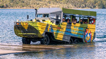 Rotorua Duck Tours - City and Lakes Tour, Rotorua, Multi-day Tours
