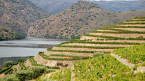 Douro Valley Luxury Tour, Porto, Day Trips