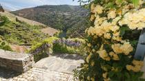 Douro Valley Private Tour, Porto, Day Trips