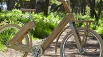 The Wooden Bicycle Tour in Stockholm, Stockholm, Segway Tours
