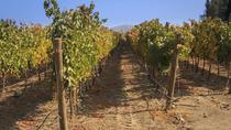 Private Tour: Casablanca Valley Day Trip Including Casas del Bosque, Valparaíso, Private ...