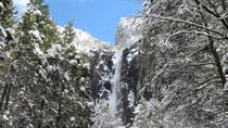 2-Day Yosemite National Park Winter Tour from San Francisco, San Francisco, Custom Private Tours