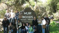 Full-Day Tour to Muir Woods and Sonoma Wine Country With Wine and Beer Tastings, San Francisco, ...