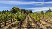 Small Group Muir Woods and Sonoma Wine Tour plus Sausalito, San Francisco, Attraction Tickets