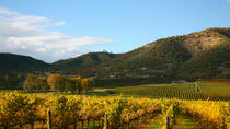 Vine to Wine Napa and Sonoma Day Trip plus Alcatraz Tour and Aquarium Access, San Francisco, Wine...