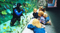 Aquarium of the Pacific with Transportation from Anaheim, Anaheim & Buena Park, Day Trips