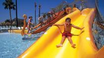 Soak City Admission with Transport from Anaheim, Anaheim & Buena Park, Half-day Tours