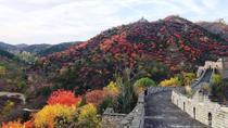 Coach Tour: Mutianyu Great Wall Day Trip with Lunch, Beijing, Day Trips