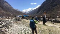 Amazing Short Langtang Valley Trek from Kathmandu Nepal, Kathmandu, Hiking & Camping