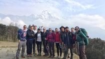 Close Up Poon Hill Circuit with Ghandruk Village Trek from Pokhara Nepal, Pokhara, Hiking & Camping