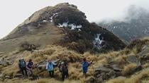 Enjoy your Mardi Himal Base Camp Dream Trekking in 3 Days from Pokhara Nepal, Pokhara, Multi-day ...