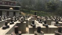 Pashupatinath and Doleshwor Mahadev Temple Darshan Tour from Kathmandu Nepal, Kathmandu, Day Trips