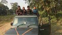 Wildlife Adventure in Chitwan Nepal, Kathmandu, 4WD, ATV & Off-Road Tours