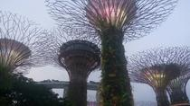 Private Full Day Singapore Highlights Tour with Private Vehicle,Lunch and Dinner, Singapore, ...
