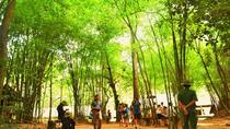 Cu Chi Tunnels & Saigon City Tour from Phu My Port, Vung Tau, Ports of Call Tours