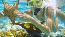 Full-Day Tour Phu Quoc Island from cruise port