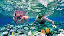 Private Tour Nha Trang - Wonderful Island Discovery, Nha Trang, Private Sightseeing Tours