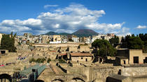 Herculaneum 2-Hour Private Guided Tour, Campania, Private Day Trips