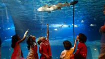 SEA LIFE Porto Entreeticket, Porto, Attraction Tickets