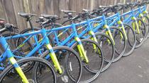 Toronto City Bicycle Rental, Toronto, Bike & Mountain Bike Tours