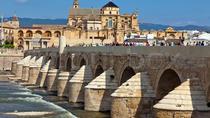 Official Tour of Córdoba 3 hours, Cordoba, Cultural Tours