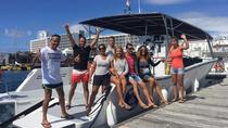 3-Hour Agores South Coast Boat Cruise from Ponta Delgada, Ponta Delgada, Sailing Trips