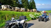 Fogo Lake Half Day Quad Bike Tour from Ponta Delgada, Ponta Delgada, 4WD, ATV & Off-Road Tours