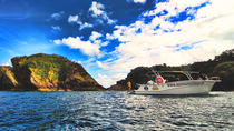Full Day Sea Life Watching Boat Tour in Santa Maria with Lunch, Ponta Delgada, Day Cruises
