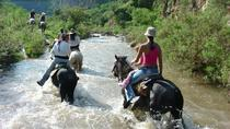 Canyon Horseback Riding Tour from San Miguel de Allende, San Miguel de Allende, Horseback Riding