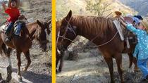 Horseback Riding and Ranch Visit Combo Tour from San Miguel de Allende , San Miguel de Allende, ...