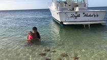 Private Snorkel Charter, Cayman Islands, Day Cruises