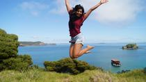 The Rock Adventure Day Cruise - 6 Hours, Bay of Islands, 4WD, ATV & Off-Road Tours