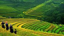 SAPA TREK - 2 DAYS 1 NIGHT STAY AT HOTEL, Hoi An, Hiking & Camping