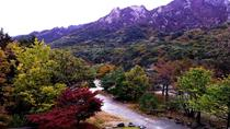 Private Seoraksan National Park Day Tour from Sokcho, South Korea, Private Day Trips