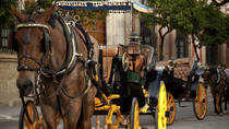 Private Horse and Carriage Tour of Seville, Seville, Bike & Mountain Bike Tours
