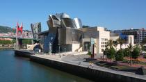 Private Tour: Guggenheim Bilbao Museum, Bilbao, Hop-on Hop-off Tours