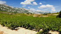 Vitoria and the Rioja Wine Region, Bilbao, Wine Tasting & Winery Tours