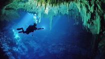 Cenotes 2-Tank Dive in Playa del Carmen, Playa del Carmen, Scuba Diving