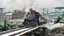 Christmas Lantern Express Train in Knoxville, Tennessee, Rail Services