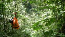 Canopy Adventure at El Valle, Panama City, Day Trips