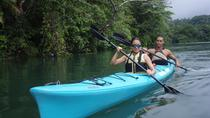 Chagres River Kayak Expedition From Panama City, Panama City