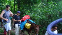 The Chagres Challenge - a full day jungle expedition from sunrise to sunset, Panama City, Day Trips