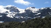 Excursion to Tronador Mount & Los Alerces Waterfall from Bariloche, Patagonia, Attraction Tickets