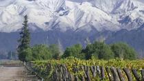 Full Day Tour: Culture of Wine in Mendoza, Mendoza, Full-day Tours