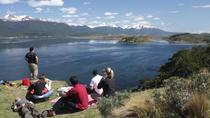 Gable Island and Penguin Rookery & Harberton Ranch (Ushuaia), Ushuaia, Day Trips